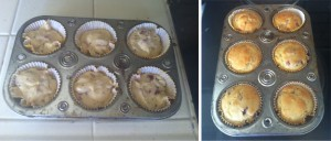 whydid-orange-cranberry-muffins