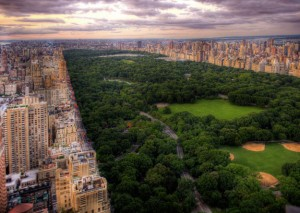 whydid-ny-central-park