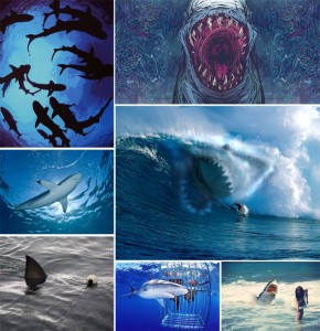 shark-week-inspiration-board