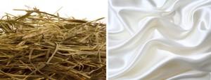 hay-vs-silk
