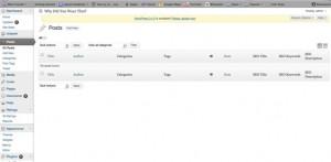 wordpress admin page