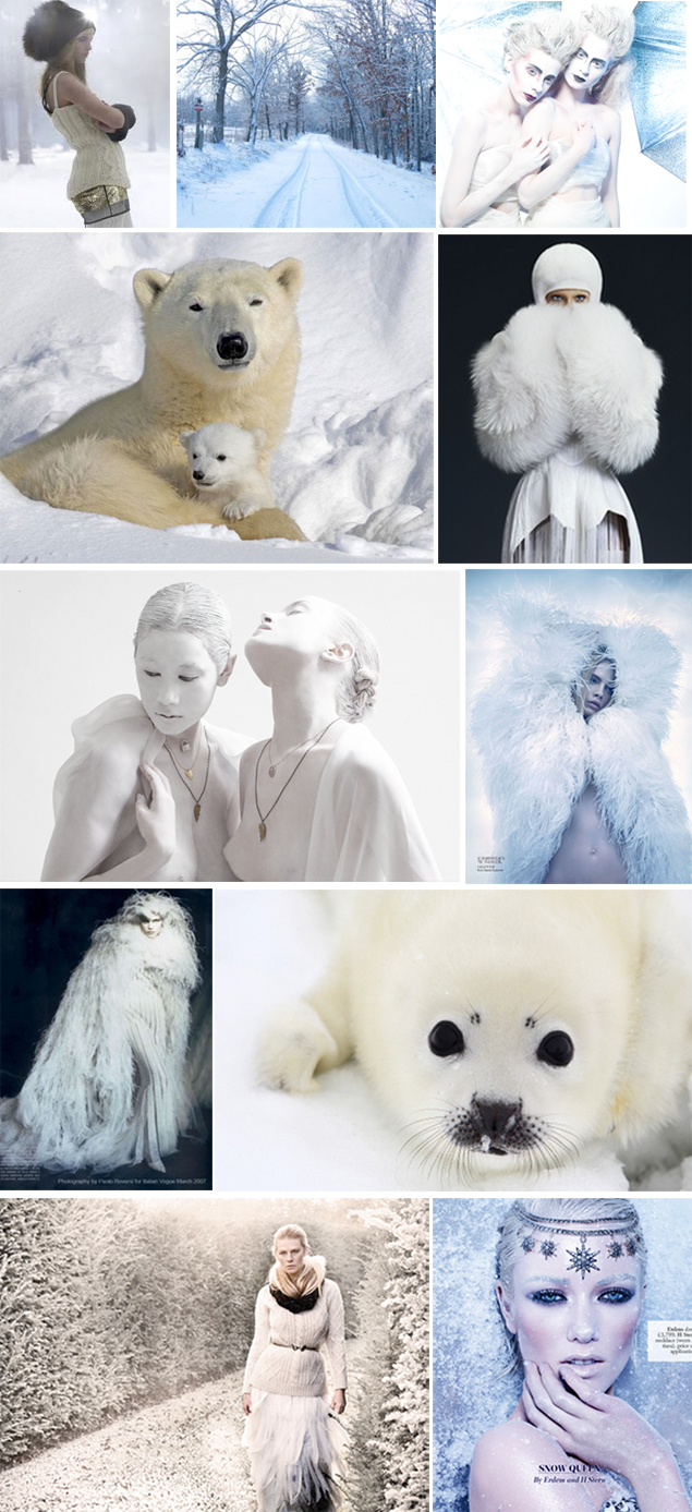 winter inspiration board