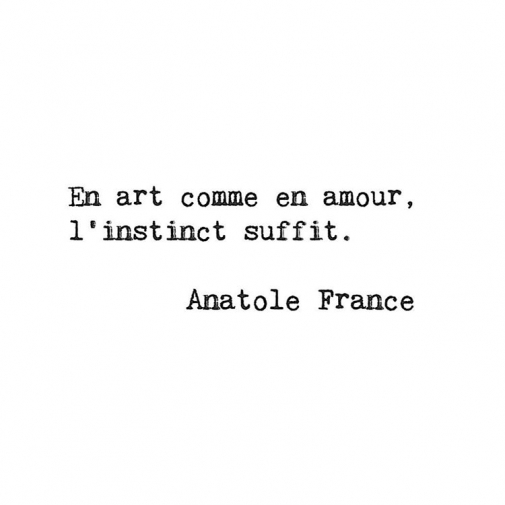 In art as in love instinct is enough Anatole Francehellip