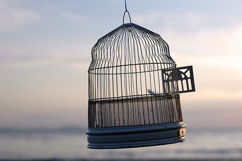 open cage door