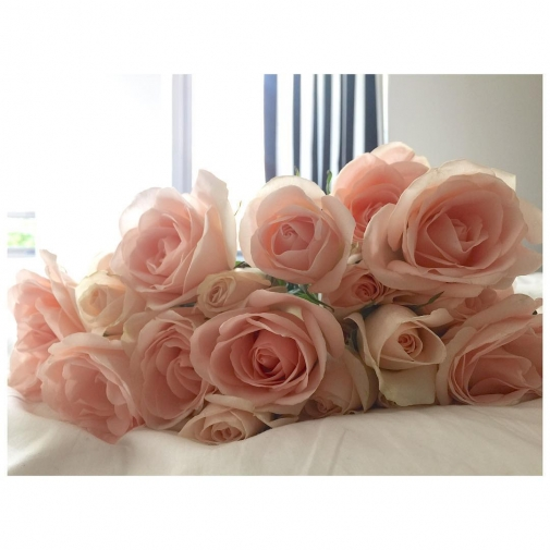 Id rather have roses on my table than diamonds onhellip