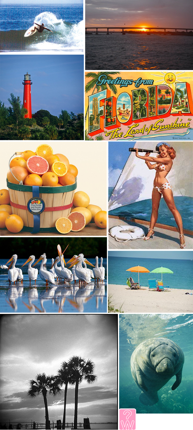 florida inspiration board